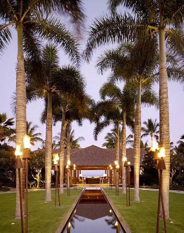 antorchas para jardín luz camino palmeras