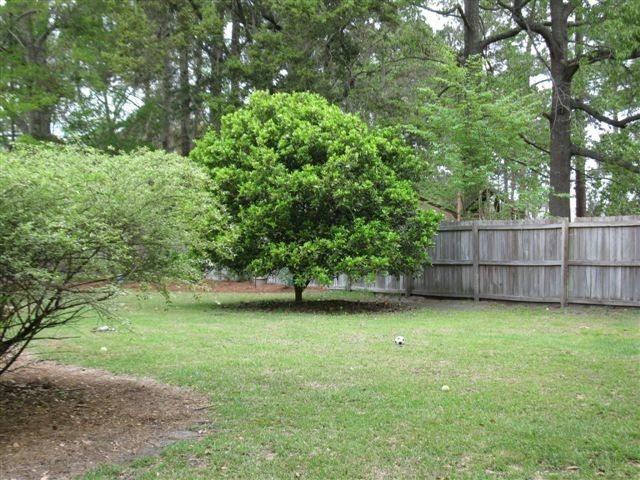 El rbol encuetra la paz bajo su sombra - Arboles para jardines pequenos ...