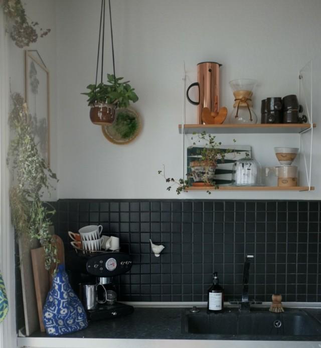 azulejos negros otro extremo cocina estanterias macetas