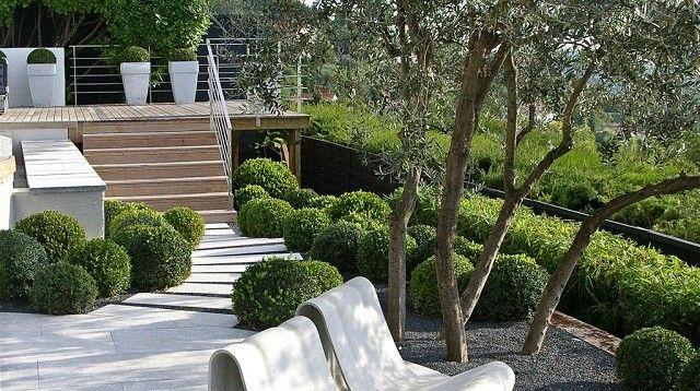 balcon contenedores plantas macetas xeriscape