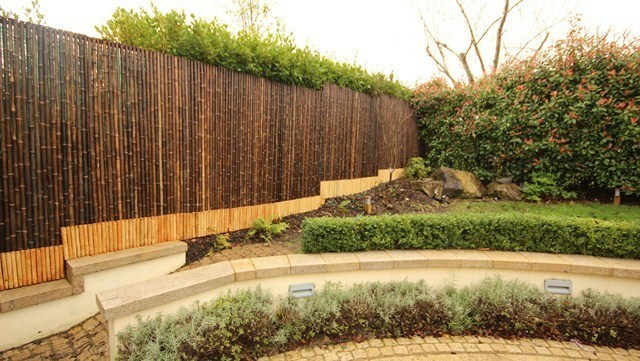 bambu cercado patio jardin plantas