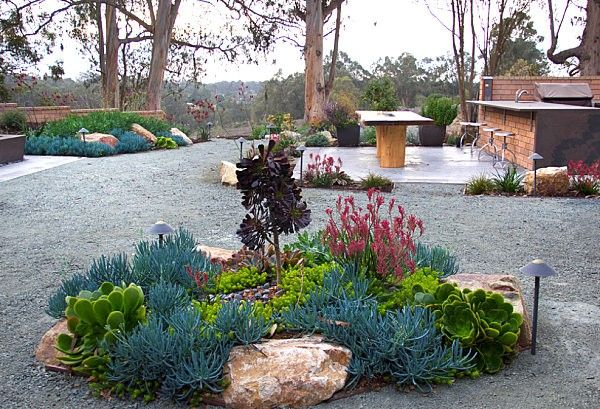 cactus xeriscape paisajismo diseño riego jardin