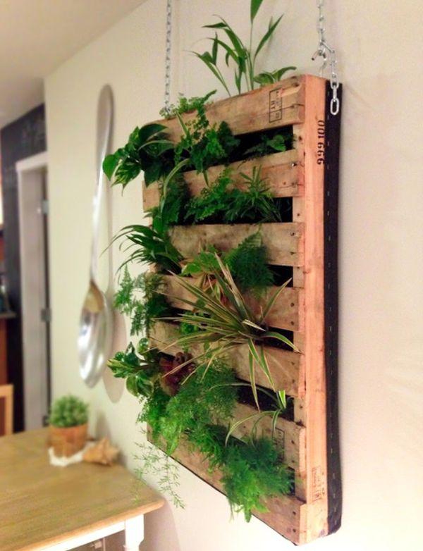 cadenas parle plantas diseño interior