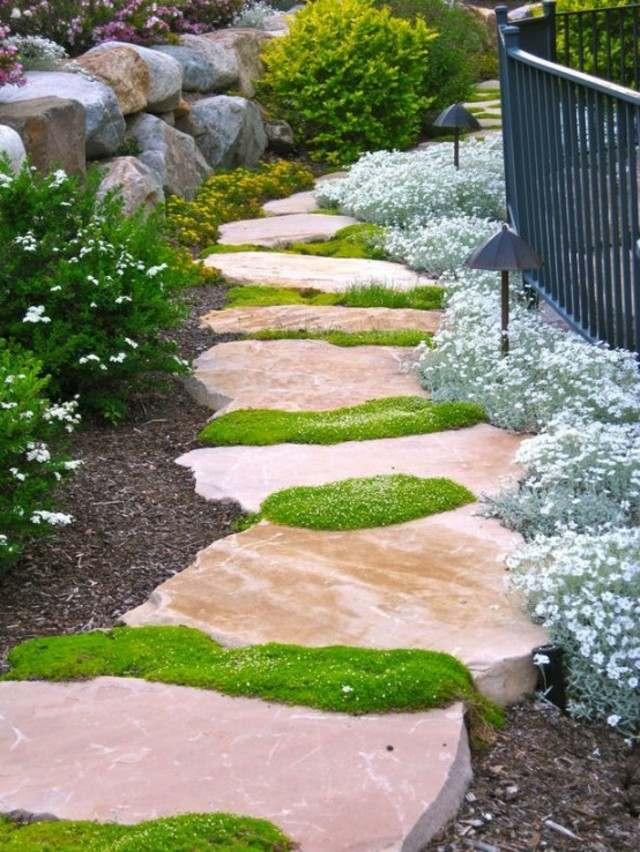 camino piedras cesped plantas musgo