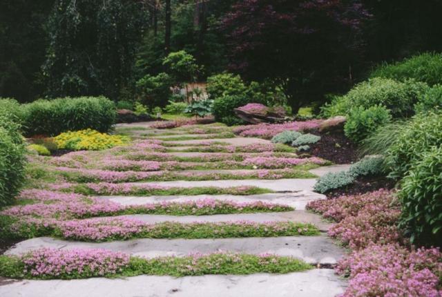 Senderos de piedra para jardines naturales for Caminos de piedra en el jardin