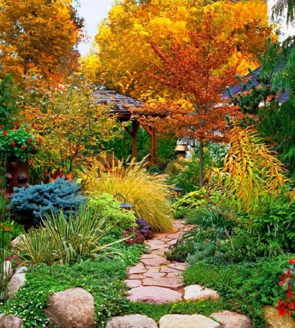 caminos de jardín muchas plantas otoño piedras