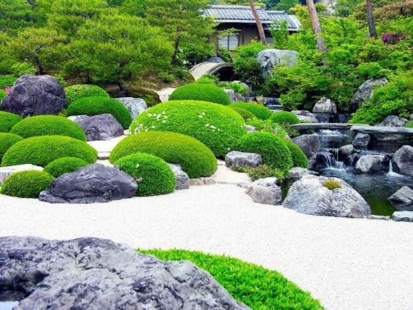 cataratas zen jardín casa plantas