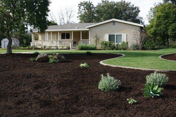 contraste plantas jardin rocas mantillo