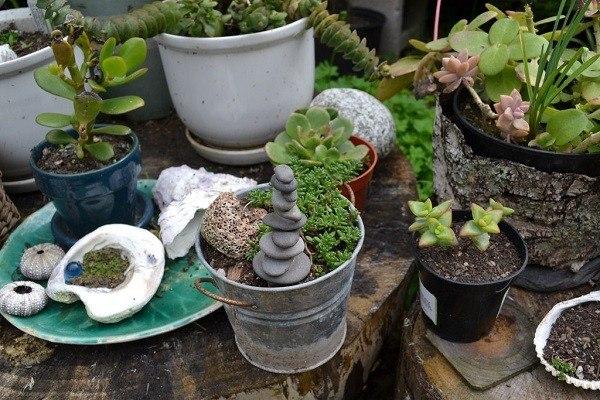 cubo maceta envase plantas diseño manualidades