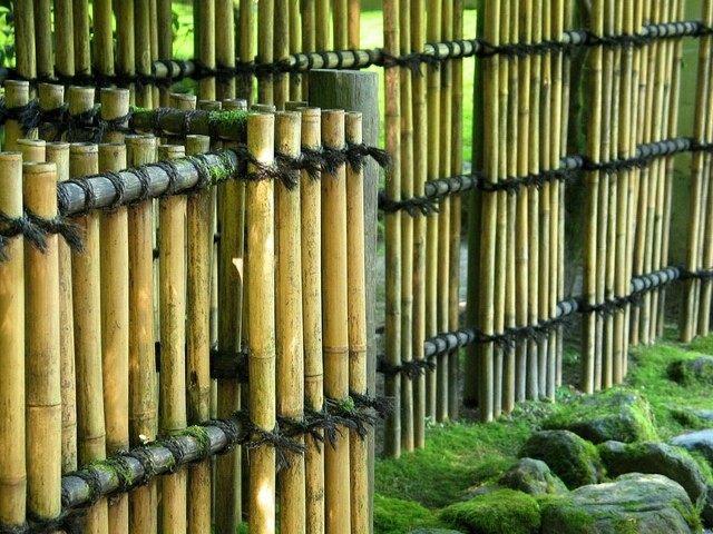 cuerda patio bambu cercado bajo rocas