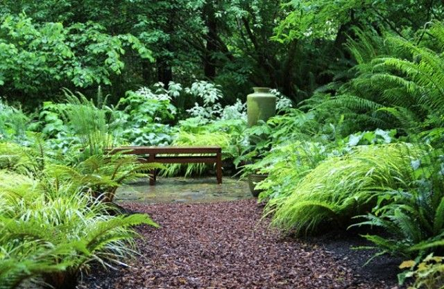 densa-vegetacion-crea-lugar-descanso-jardin