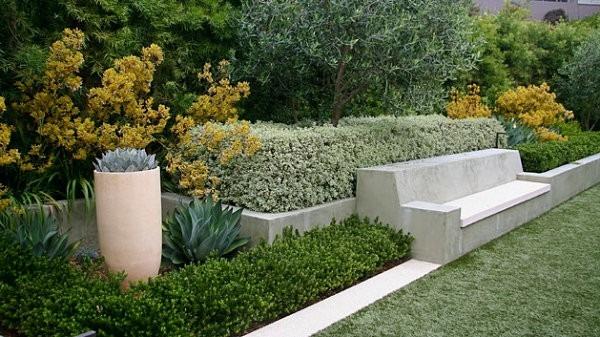 diseño de jardines bancos suculentas macetas