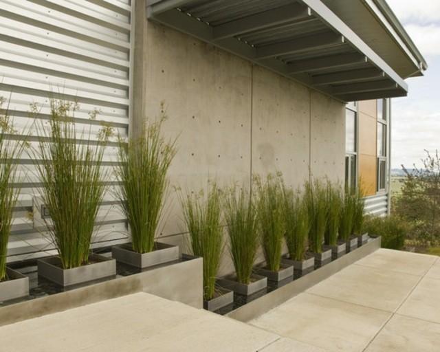 diseño de jardines contenedores terraza moderna