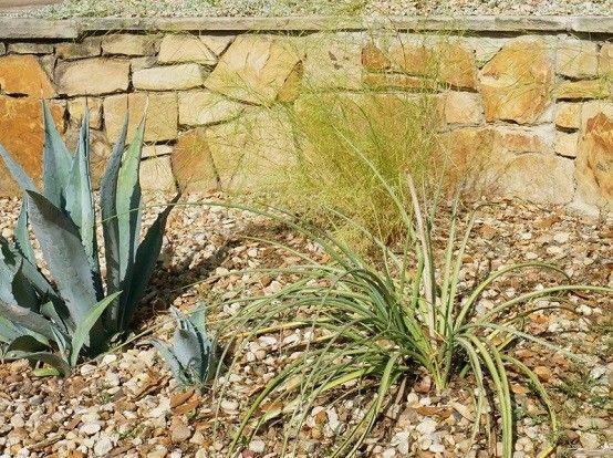 diseño de jardines plantas ideas imagenes