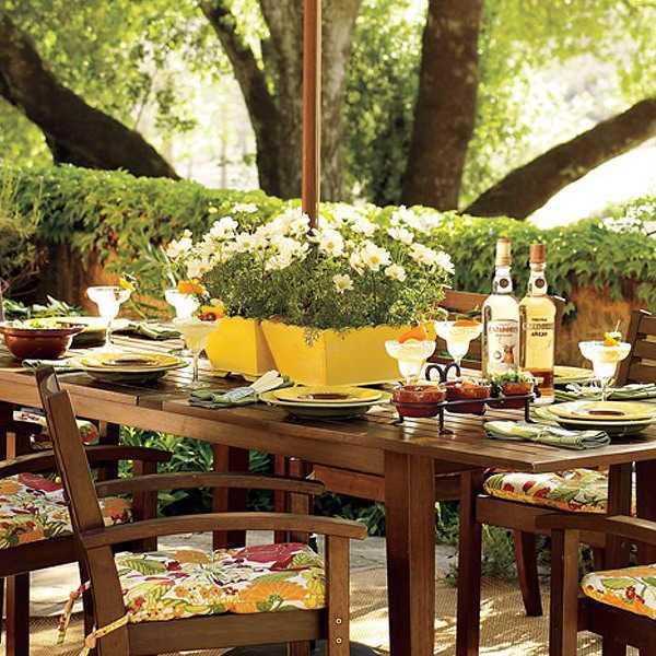 entretenimiento patio bebidas plantas mobiliario