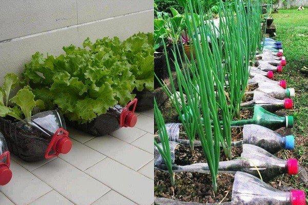 Manualidades originales ideas diy para tu hogar Jardines verticales baratos