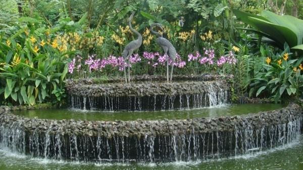 espectacular catarata redonda jardín plantas