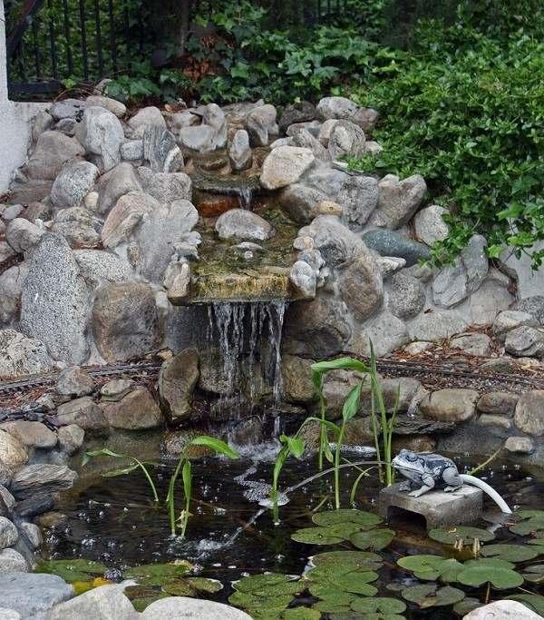 estanque con cascada tambien fuente