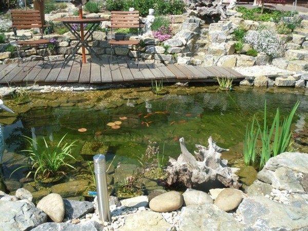 estanque jardín madera flotante decoración