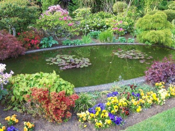 estanque jardín  rodeado flores colores
