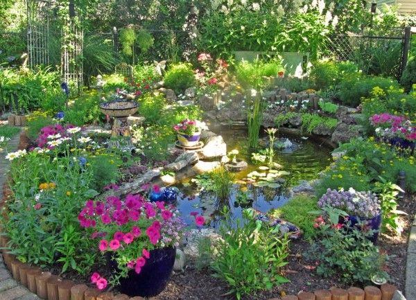 estanque precioso muchas flores colores