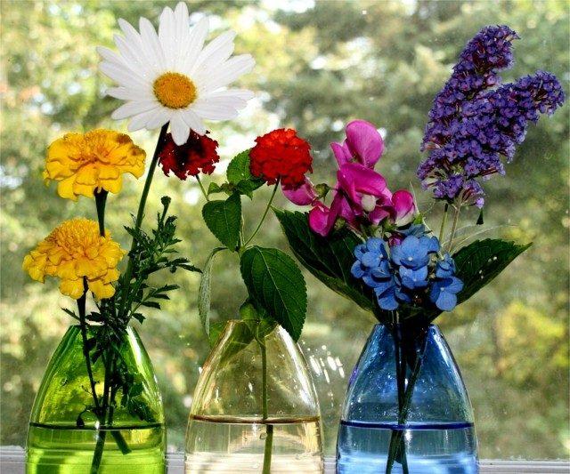 flores primavera colores bonitas varias