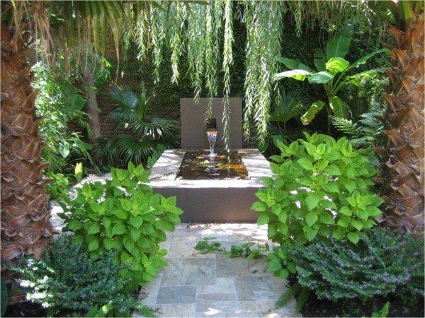 fuente escondida patio jardín plantas