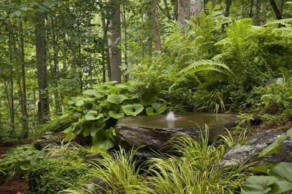 fuente natural roca grande plantas
