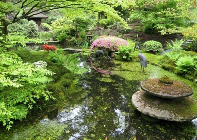 grullas jardín flores japonés lago