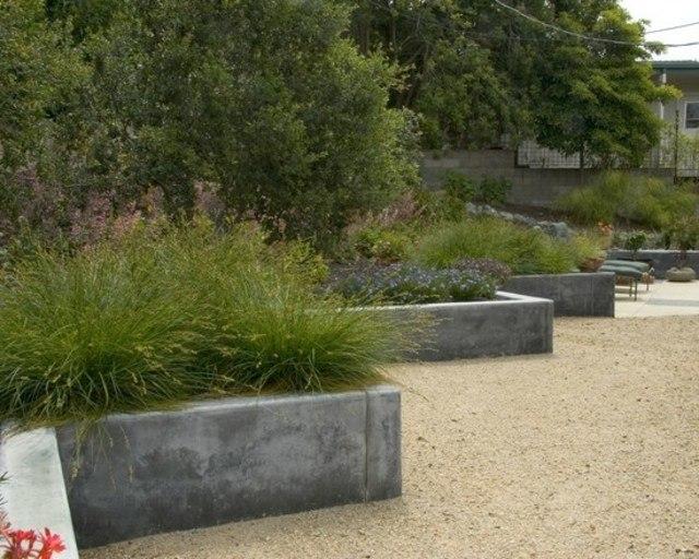 hierba muro plantas tumbonas concreto