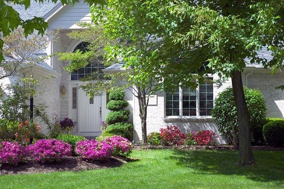 ideas jardin patio trasero decoracion paisaje