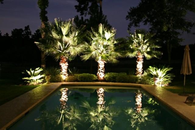 iluminación exterior palmeras luz piscina