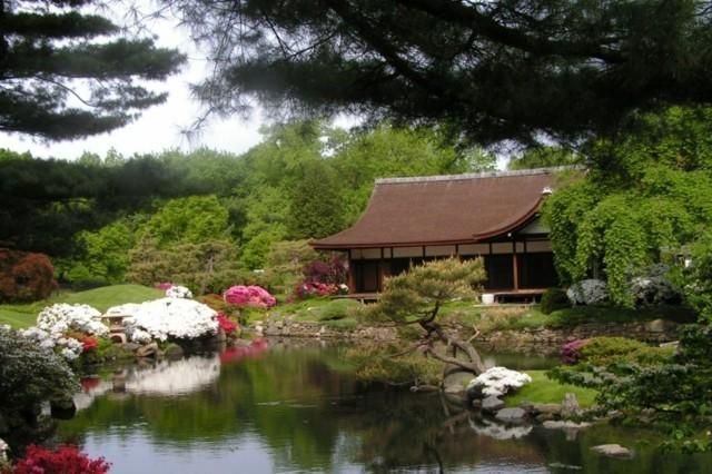 japonés lago jardín diseño casa arbol
