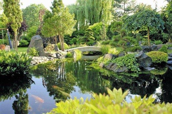 jardín bonito lago grande plantas
