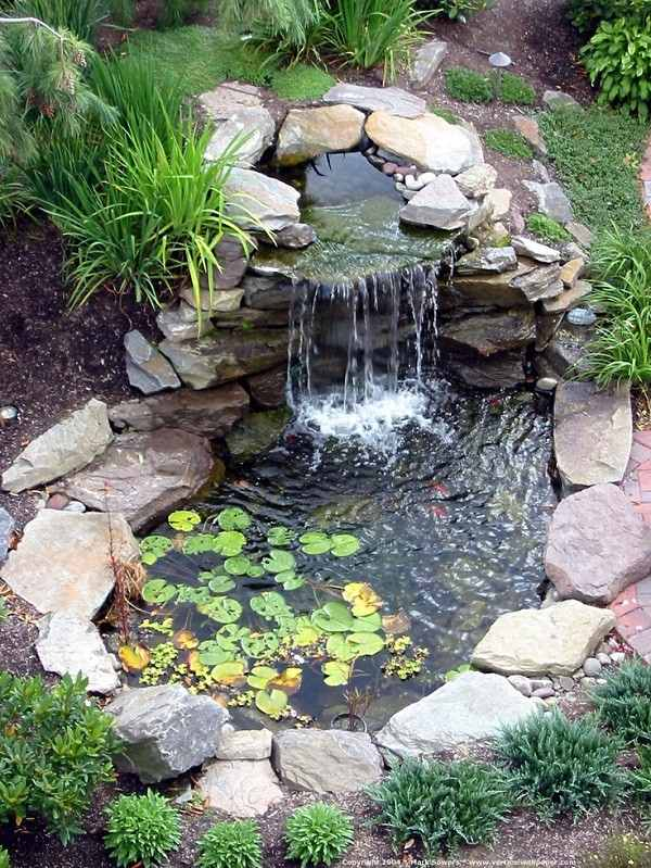 estanque de jardin redondo con piedras y poca vegetacion