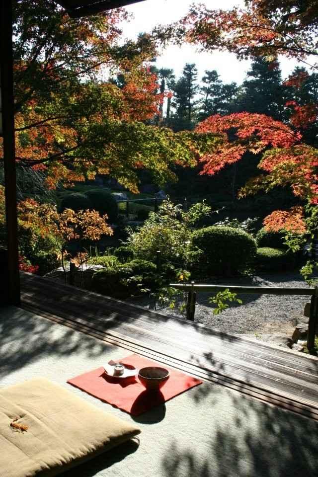 jardin filosofia zen meditación plantas vista