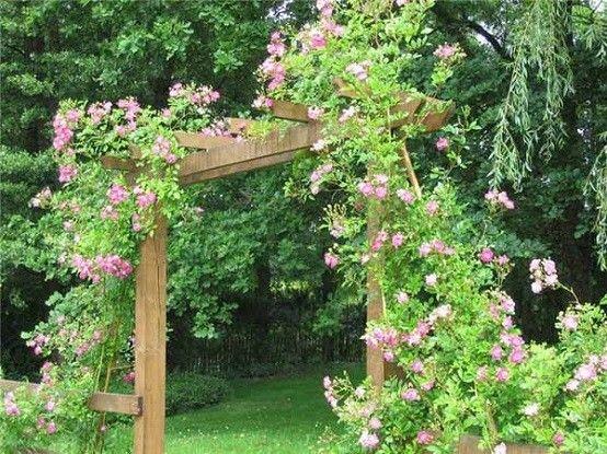 jardin flores programa patio decoracion diseñar