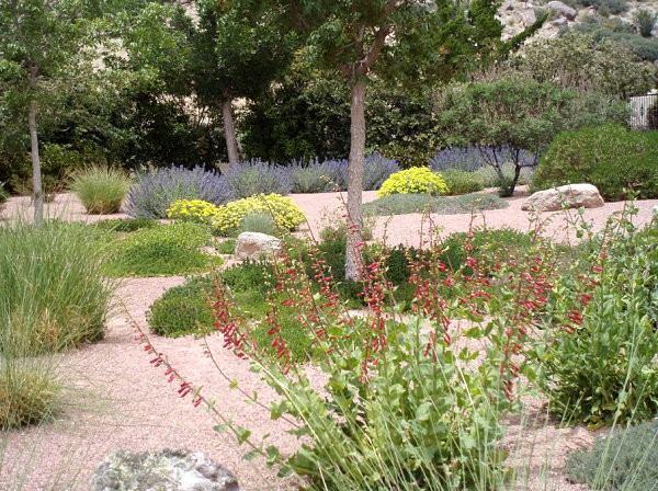 jardin paisajismo plantas flores diseño