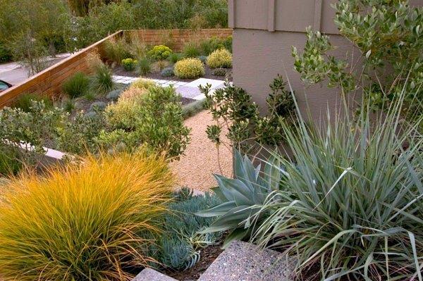 jardin paisajismo plantas riego moderno
