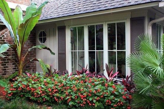 jardin tropical flores jardineria paisajismo moderno