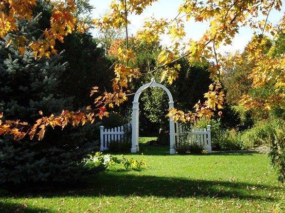 jardineria arco cesped plantas arco