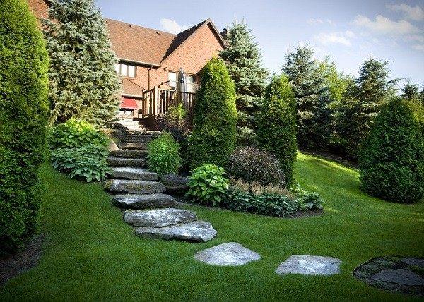 jardinería en pendientes césped rocas jardin pinos