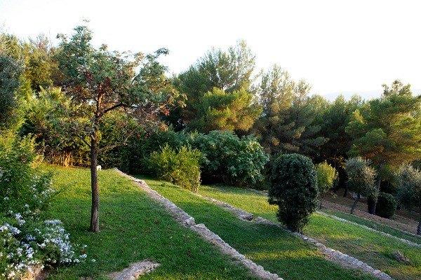 jardinería en pendientes contenedores terrazas
