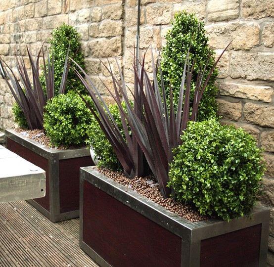 Plantas de exterior ideas para un jard n de ensue o - Plantas de exterior resistentes al frio y calor ...