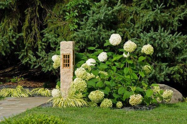 jardinería flores blancas arbusto