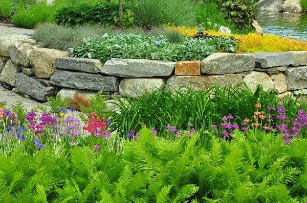 jardineria paisaje muchas flores verdes