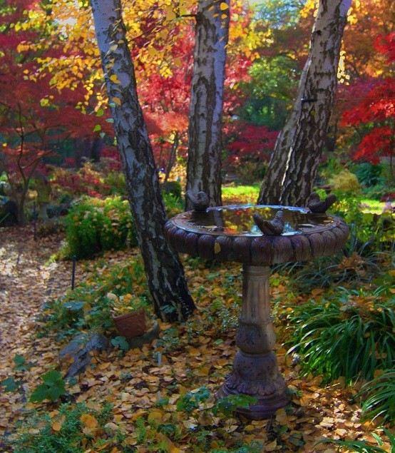 jardines fuente exterior rocas decoracion