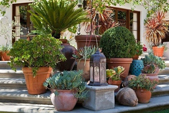 jardines plantas macetas muebles jardineria