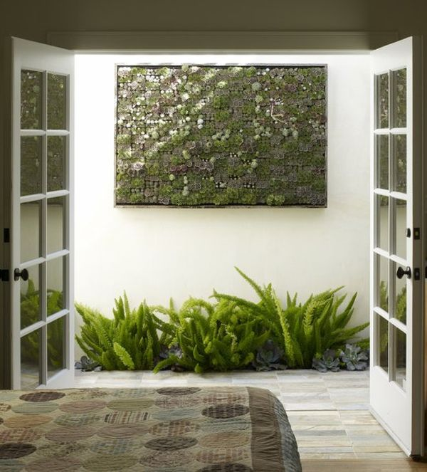 jardines verticales interior helechos mural