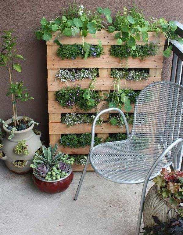 jardines verticales pared parle macetas balcon